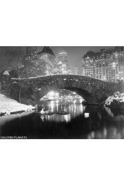 Nowy Jork Central Park Zimą - reprodukcja
