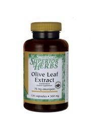 Swanson Olive Leaf - Liść Oliwny 500mg 120 kaps.