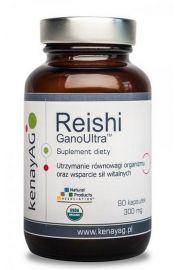 Reishi (90 kapsułek) - suplement diety