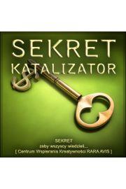 (e) Sekret Katalizator - Paweł Stań