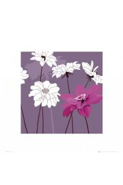 Purpurowe Kwiaty - reprodukcja