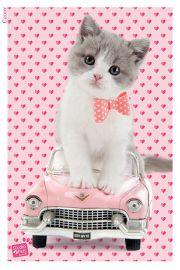 Studio Pets Kotek w Cadillacu - plakat