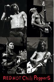 Red Hot Chili Peppers Live - plakat