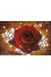 Liryczna Róża - plakat