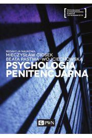 Psychologia penitencjarna