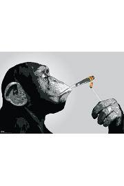 Steez Monkey Joint Time - plakat