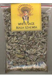 Biała Szałwia (Salvia apiana), White Sage