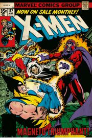 X-Men Magneto - plakat