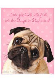 Mops - Radosny Pies - plakat