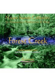 (e) Birds & Streams vol. 1: Forest Creek - Piotr Janeczek