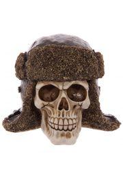 Czaszka w skórzanej czapce