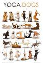 Psy ćwiczą Jogę - zabawny plakat