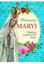 Sercem przy Maryi - Religioznawstwo
