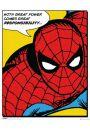 Spiderman - retro plakat