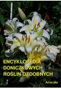 eBook Encyklopedia doniczkowych roślin ozdobnych mobi, epub
