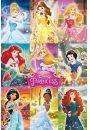 Disney Ksi�niczki - Kola� - plakat - Plakaty. Filmy dla dzieci