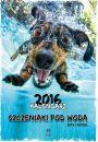 Kalendarz 2016 Szczeniaki pod wodą -