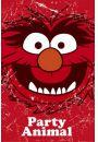 The Muppets�Zwierzak - plakat - Komedie