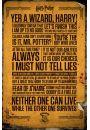 Harry Potter Teksty - plakat - Fantastyczne