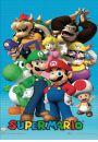 Nintendo Mario Bros - plakat 3D - Plakaty 3D. R�ne